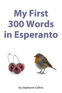My First 300 Words in Esperanto