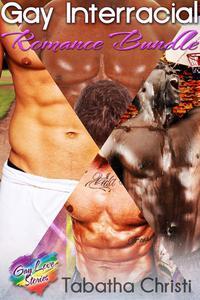 Gay Interracial Romance Bundle
