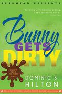 Bunny Gets Dirty