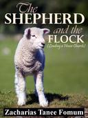 The Shepherd And The Flock (Leading A House Church)
