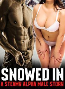 Snowed In: A Steamy Alpha Male Story