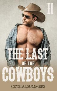 The Last of the Cowboys - II (Gay Cowboys Erotic Romance)