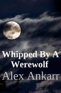 Whipped By A Werewolf