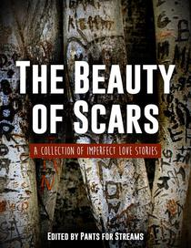 The Beauty of Scars
