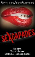 Sexcapades:  Sizzling.Sexy.Snippets