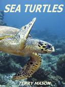 Sea Turtles:Fun Facts & Amazing Pictures - Learn About Sea Turtles