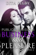 Business and Pleasure (exhibitionism BDSM domination submission public office sex bareback creampie erotica erotic romance)
