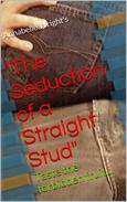 Seducing a Straight Stud
