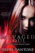 Salvaged Soul