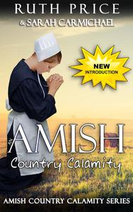 An Amish Country Calamity