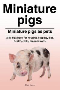 Miniature pigs. Miniature pigs as pets.