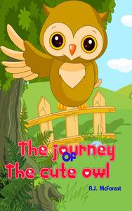 The Journey Of The Cute Owl