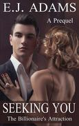Seeking You: A Prequel to The Billionaire's Attraction Series