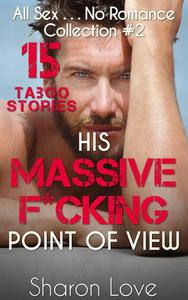 His Massive F*cking Point Of View Collection 2