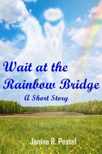 Wait at the Rainbow Bridge