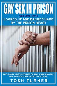 """Gay Sex in Prison: Volume Two """"Locked Up and Banged Hard by the Prison Beast"""""""