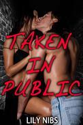 Taken In Public (Rough Stranger Sex/Exhibitionism)