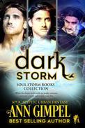 Dark Storm, Soul Storm Books Collection