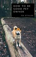 How to be Good Pet Owner