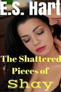 The Shattered Pieces of Shay