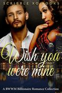 Wish You Were MINE: A BWWM Interracial Billionaire Romance Book Collection