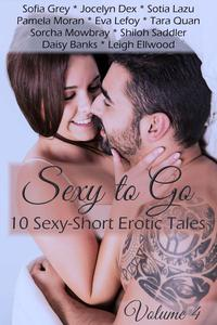 Sexy to Go Volume 4 Erotic Romance Box Set