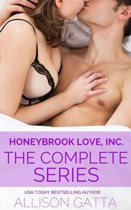 Honeybrook Love, Inc. Box Set