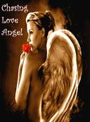 Chasing Love Angel