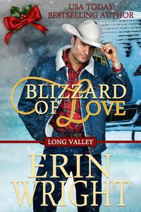 Blizzard of Love - Long Valley