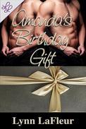 Amanda's Birthday Gift
