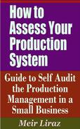 How to Assess Your Production System: Guide to Self Audit the Production Management in a Small Business