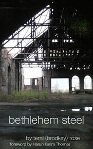 Bethlehem Steel - Cold and Colder