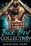 Bad Boy Collection: 5 Steamy Bad Boy Short Stories