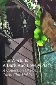 The World Is A Dark And Lovely Place