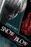 Snow n' Blow