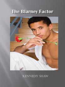 The Blarney Factor