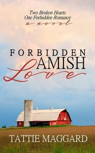 Forbidden Amish Love