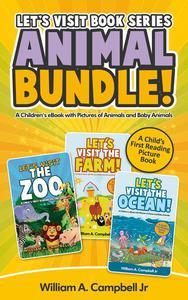 Let's Visit Book Series Animal Bundle