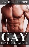 Gay: Con el culo al aire