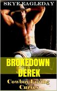Brokedown Derek (Cowboy Loving Curves) BBW/Cowboy Romance
