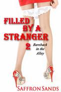 Filled By A Stranger 2: Bareback in the Alley