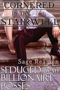 Cornered in the Stairwell: Seduced by my Billionaire Bosses (Dominant Male DP Erotica)