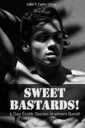 Sweet Bastards! - 5 Gay Erotik Stories in einem Band