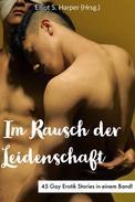 Im Rausch der Leidenschaft - 45 Gay Erotik Stories in einem Band!
