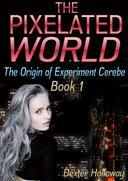 The Pixelated World