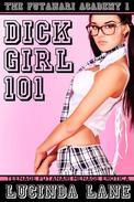 Dickgirl 101 (Teenage Futanari Menage Erotica)