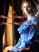 The Bounty Hunter's Christmas Mail Order Bride