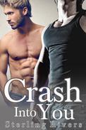 Crash Into You (Gay Older Man Romance)