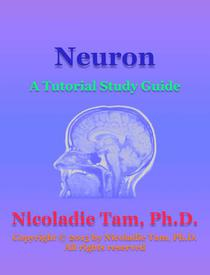 Neuron: A Tutorial Study Guide