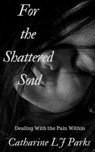 For the Shattered Soul